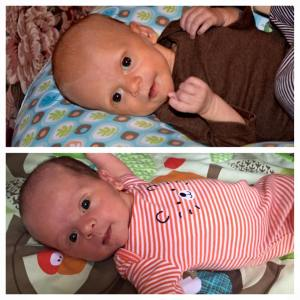 Kevin (top) & Kyler (bottom) at 4 weeks old
